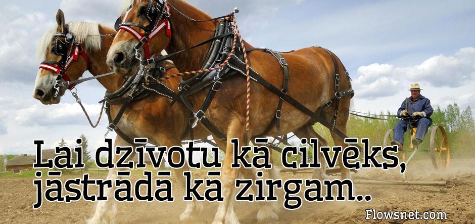 Lai dzīvotu kā cilvēks, jāstrādā kā zirgam..